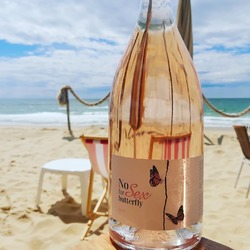 Ride through your Summer with a touch of impertinence... #nosexforbutterfly #chateaudevalcombe #organicrose #familyvineyard