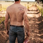 Second and last question to win your #pastelrose 🍷 bottle: whose Back is this 😱 ? Basile or Nicolas ? Here is a tip for you: he looks at vines 🌿 the way he looks at waves 🌊, a lot of pleasure and a bit of fear.... #chateaudevalcombe #familyvineyard #costieresdenimes #rosetatoo #carloamen