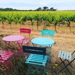 Getting ready to welcome our Pique Nique guests right in the middle of our vineyard !! #chateaudevalcombe #nosexforbutterfly #costieresdenimes #organicwines #familyvineyard